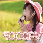 開始8ヶ月目にしてなんとか5000PVを達成。これまでを振り返ってみる。