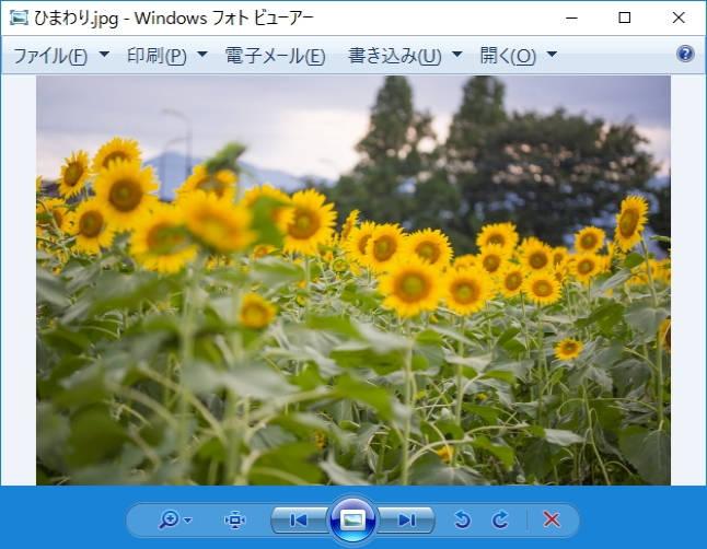 Windows10の画像表示アプリ「フォトビューアー」